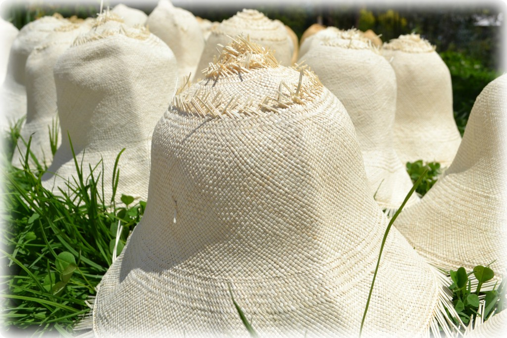 Hats-drying-in-the-sun